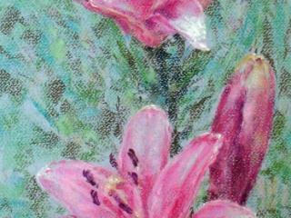 """Работа Любавы Викторовой """"Лилии"""", 2011, 65х25, пастель"""