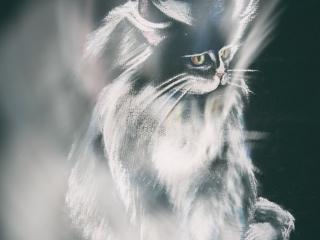 """Работа Юлии Воронцовой """"В темноте"""", 29x21, тонированная бумага, пастель, 2006"""